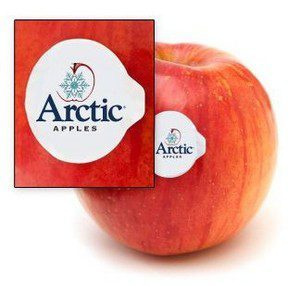 arctic-apples-label_large-e1487715535900-300x286