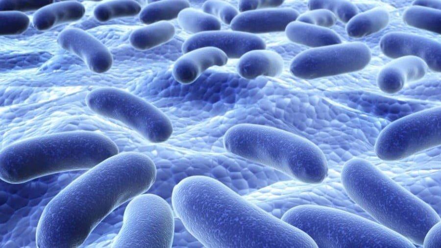 7 Ways Probiotics Detoxify Your Body