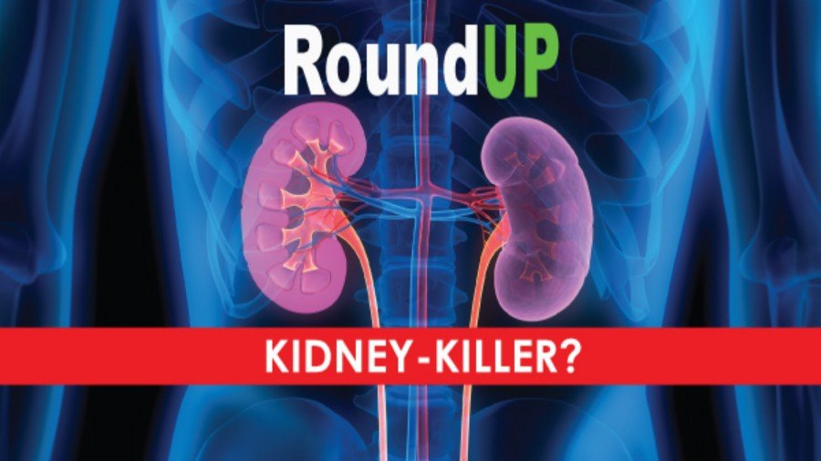 Roundup Herbicide: A Kidney-Killer?