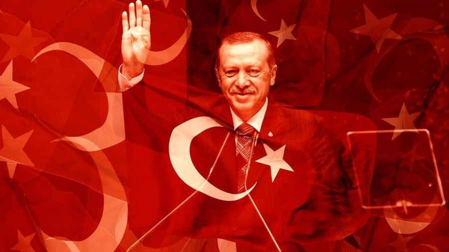 Turkey on a Roll