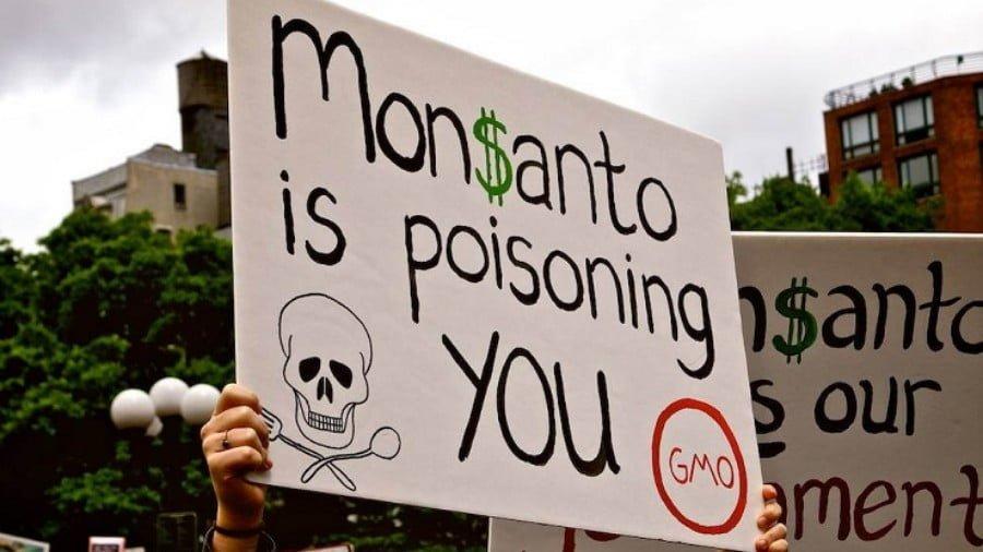 Monsanto Guilty Verdict Is Only Beginning