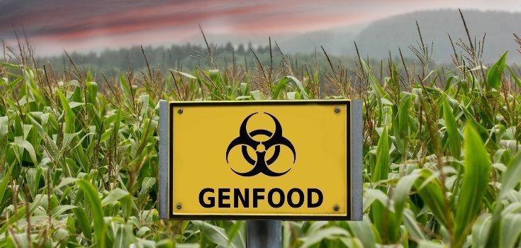 gmo_crops_genfood_735_350