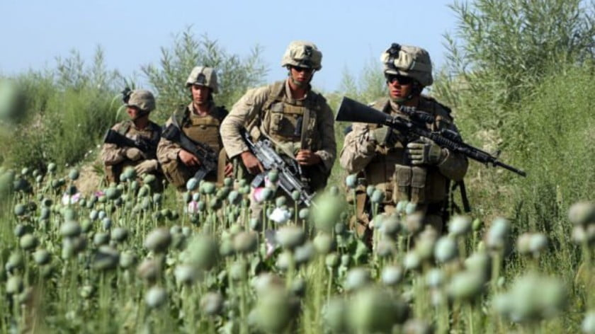 War is Good for Business and Organized Crime: Afghanistan's Multibillion Dollar Opium Trade. Rising Heroin Addiction in the US