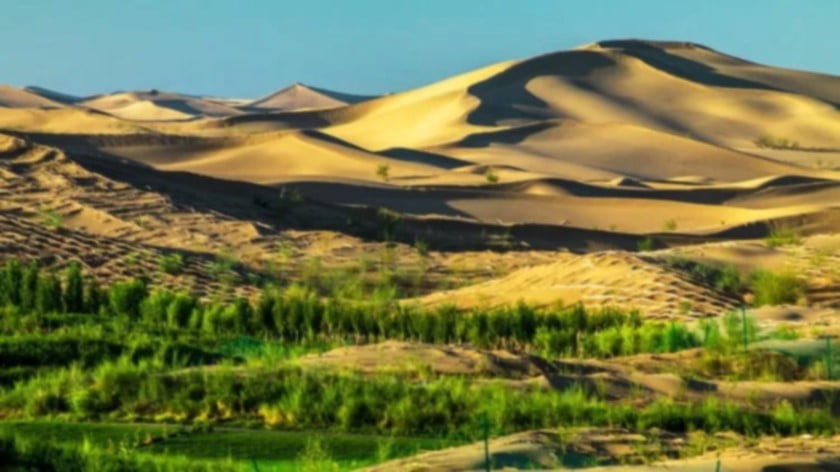 China Is Terraforming the Gobi Desert