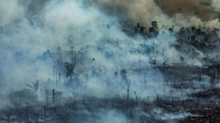 Amazon Fires Will Have Global Consequences. The UN Must Act.
