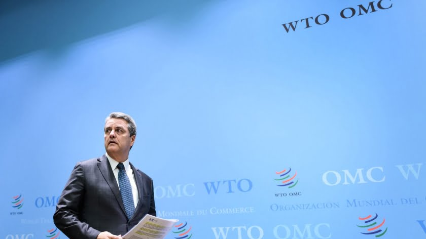 The Paralysis of the WTO