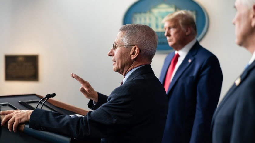 Fauci vs. Trump — Who's Right?