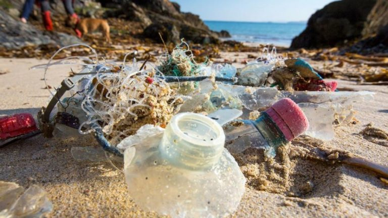 Is There Life Beyond Plastic?