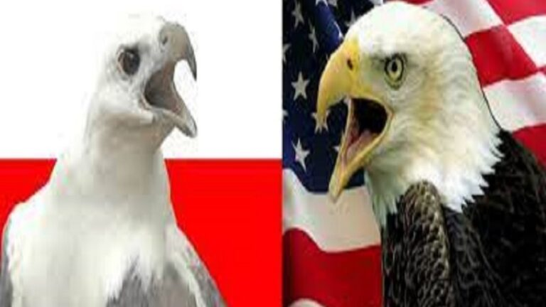 How Serious Are Poland's Grand Strategic Disagreements With the US?