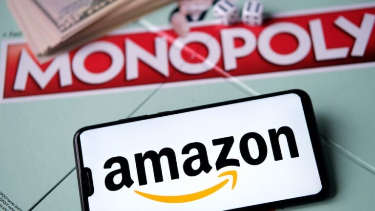 """Amazon, """"Economic Terrorism"""" and the Destruction of Competition and Livelihoods"""