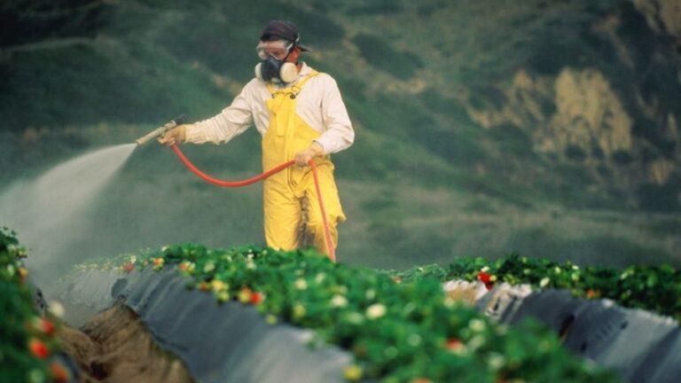 Address the Global Public Health Crisis: Ban Glyphosate Now!