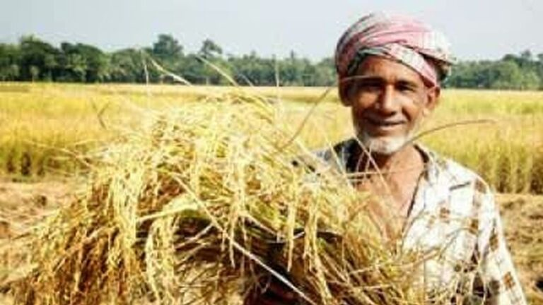 Agrifood Conglomerates: Smashing the Heads of India's Farmers: A Global Struggle Against Tyranny