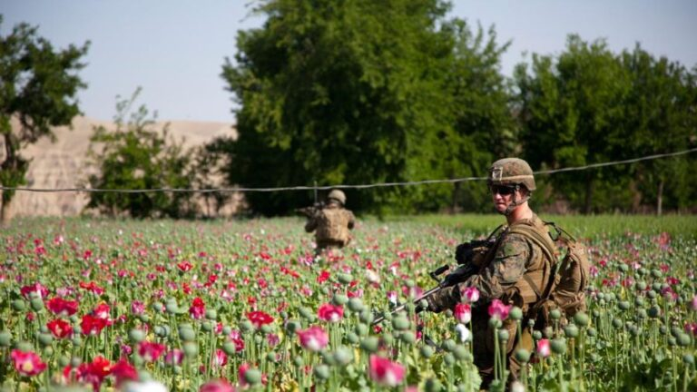 Afghanistan: Where's the Cash?